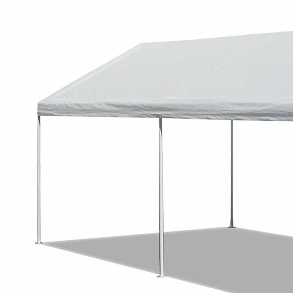8+ Cute 10 X 20 Canopy Carport — caroylina.com