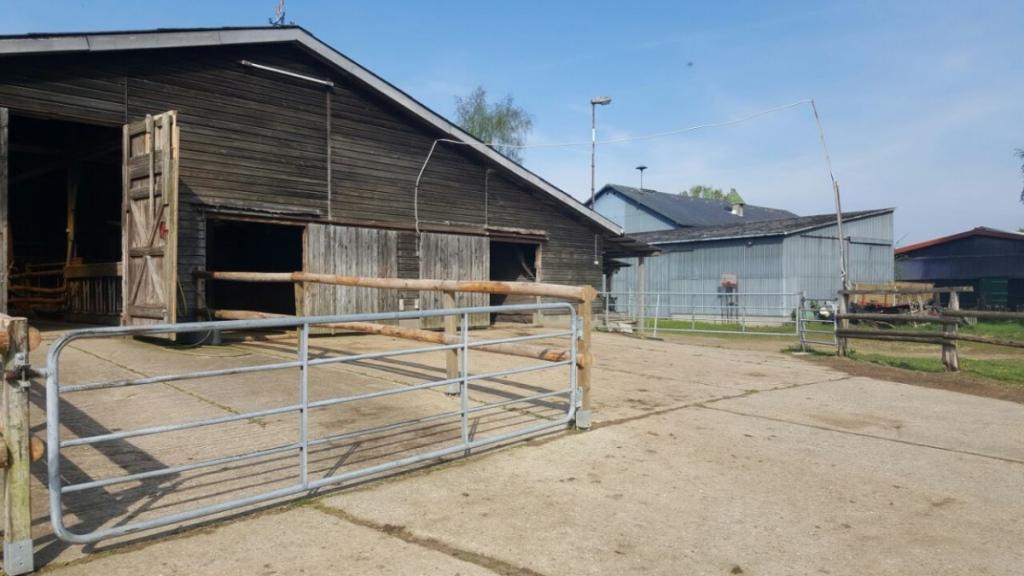 Schöner Resthofreitanlage Für Pferdeliebhaber  Schwarz Immobilien Image Sample in 20X40 Metal Carport